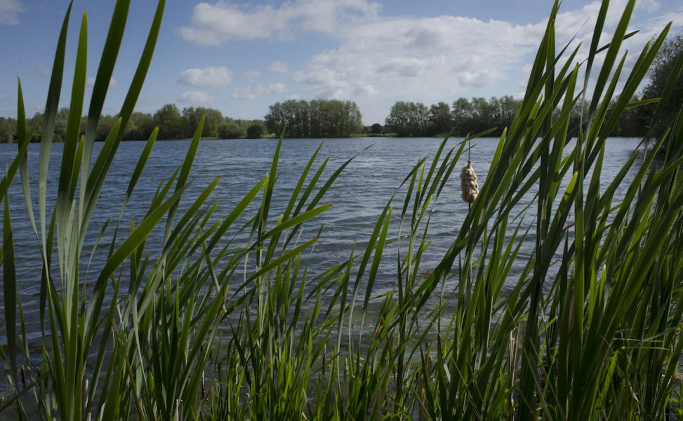 Conningbrooke Lakes